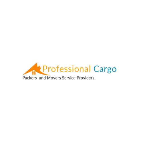 Professional Cargo India Movers